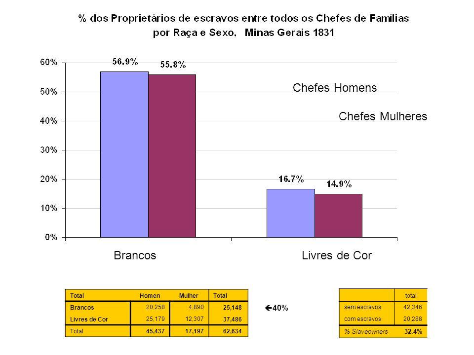Chefes Homens Chefes Mulheres Brancos Livres de Cor 40% % Slaveowners