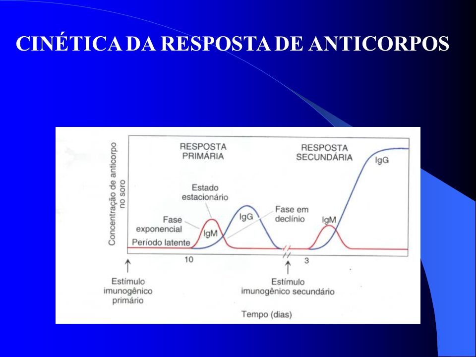 CINÉTICA DA RESPOSTA DE ANTICORPOS