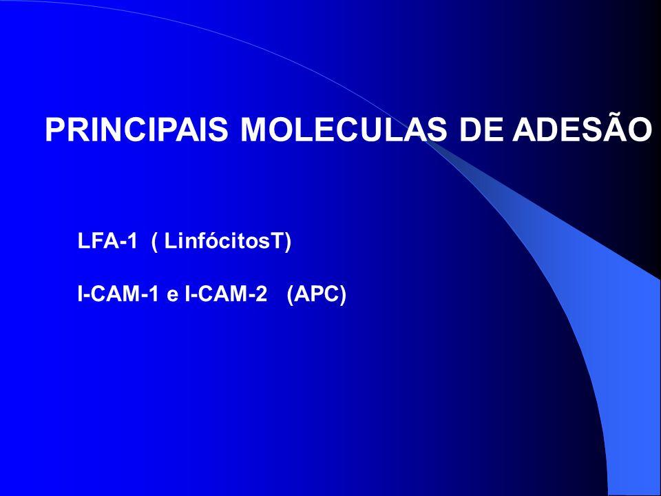 PRINCIPAIS MOLECULAS DE ADESÃO