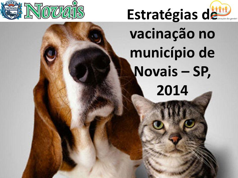 Estratégias de vacinação no município de Novais – SP, 2014