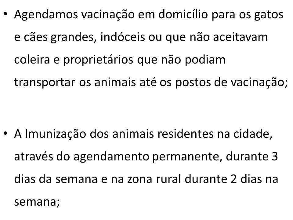 Agendamos vacinação em domicílio para os gatos e cães grandes, indóceis ou que não aceitavam coleira e proprietários que não podiam transportar os animais até os postos de vacinação;