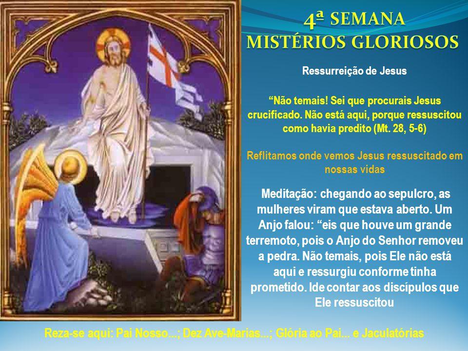 Reflitamos onde vemos Jesus ressuscitado em nossas vidas