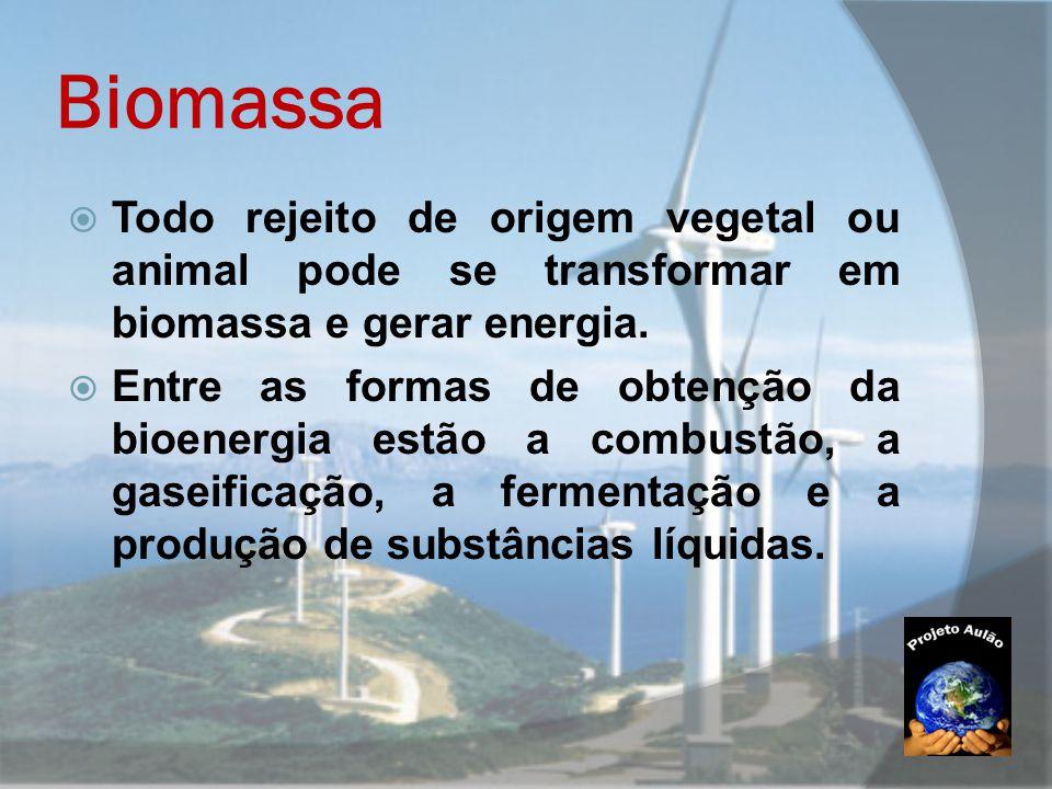 Biomassa Todo rejeito de origem vegetal ou animal pode se transformar em biomassa e gerar energia.