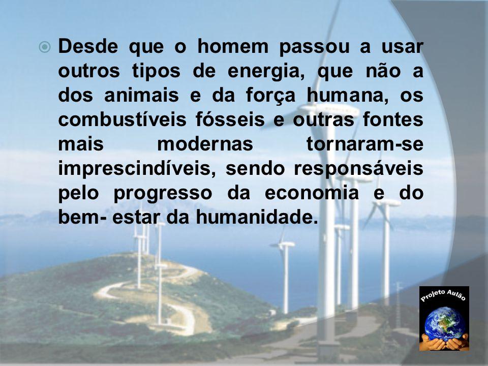 Desde que o homem passou a usar outros tipos de energia, que não a dos animais e da força humana, os combustíveis fósseis e outras fontes mais modernas tornaram-se imprescindíveis, sendo responsáveis pelo progresso da economia e do bem- estar da humanidade.