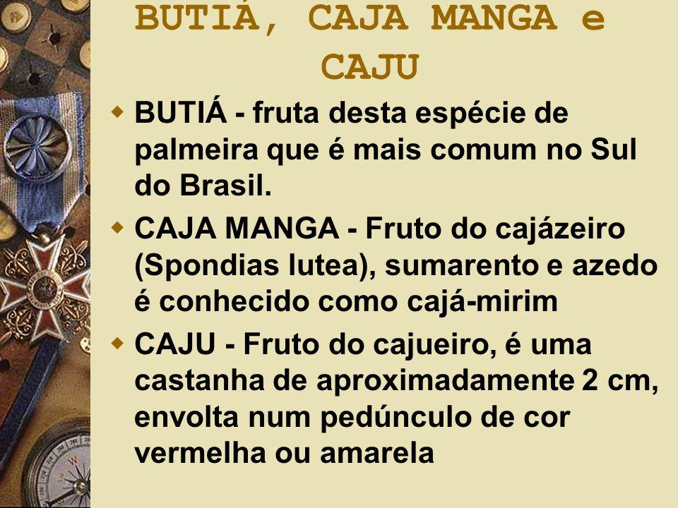 BUTIÁ, CAJA MANGA e CAJU BUTIÁ - fruta desta espécie de palmeira que é mais comum no Sul do Brasil.