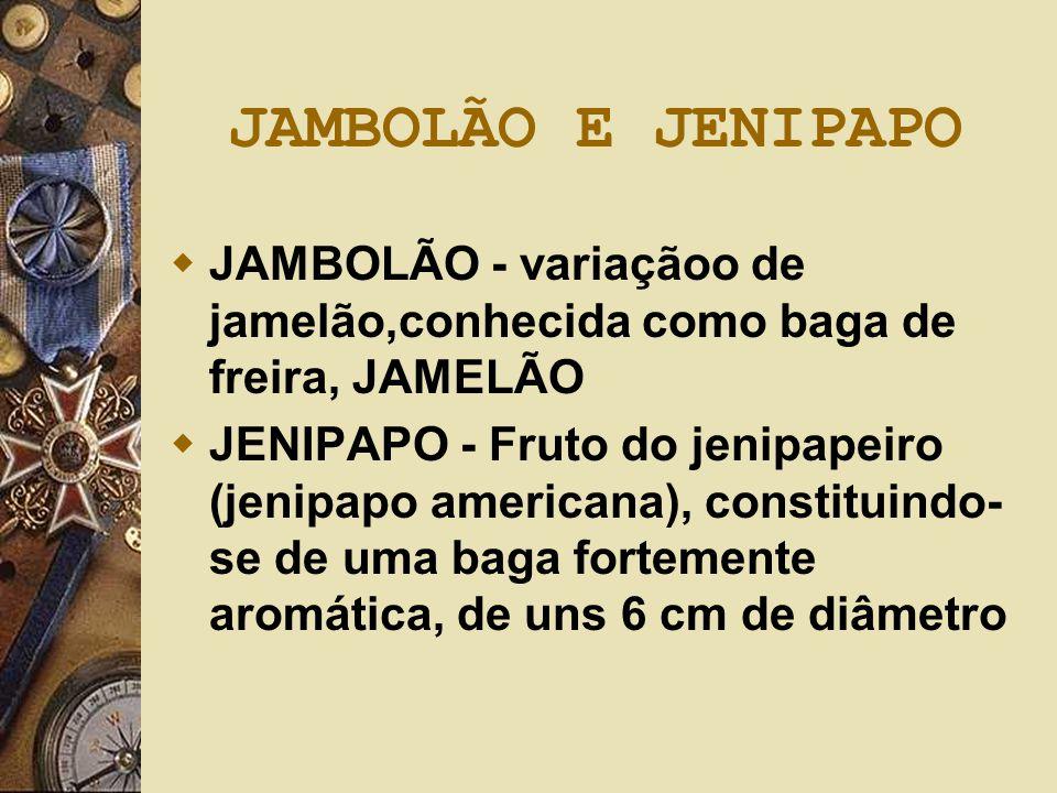 JAMBOLÃO E JENIPAPO JAMBOLÃO - variaçãoo de jamelão,conhecida como baga de freira, JAMELÃO.