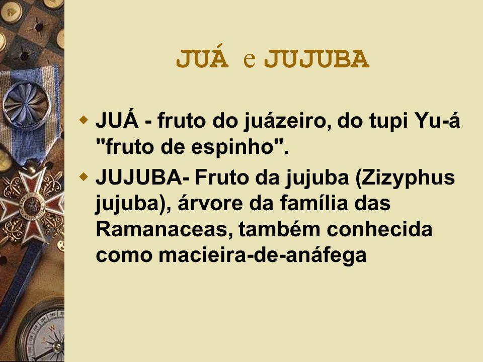 JUÁ e JUJUBA JUÁ - fruto do juázeiro, do tupi Yu-á fruto de espinho .