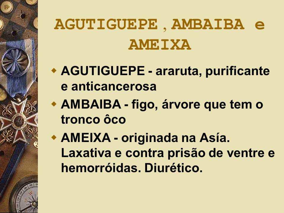AGUTIGUEPE , AMBAIBA e AMEIXA