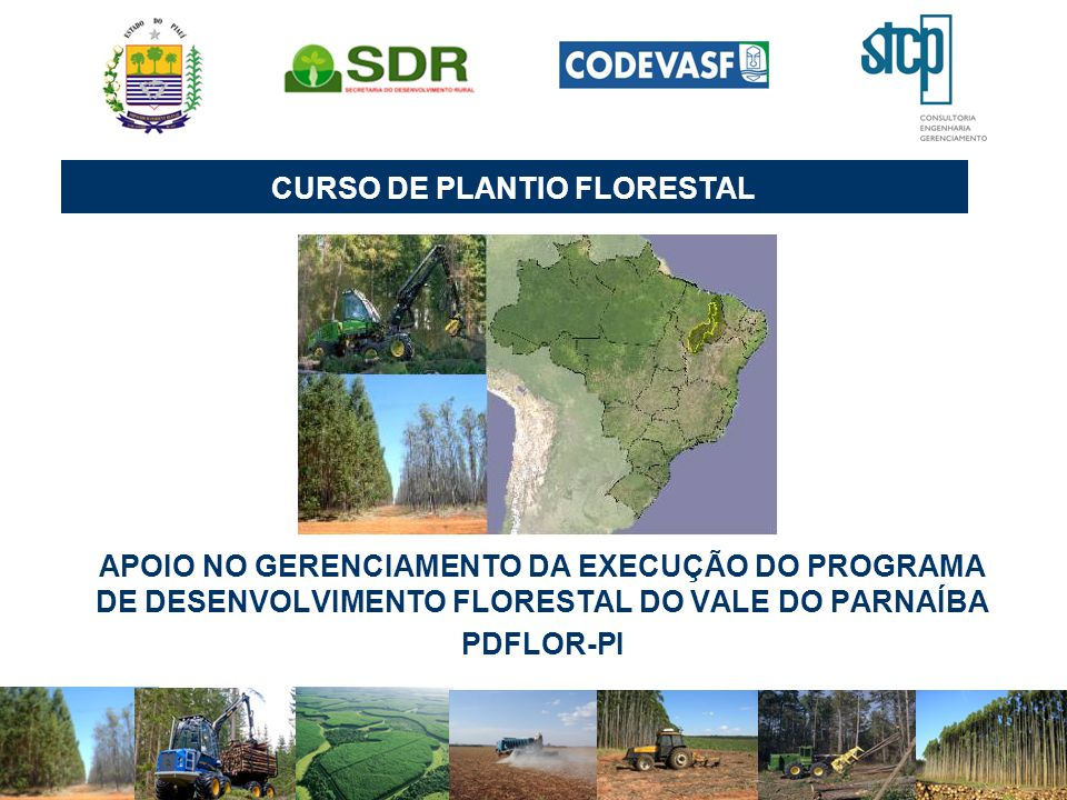 CURSO DE PLANTIO FLORESTAL