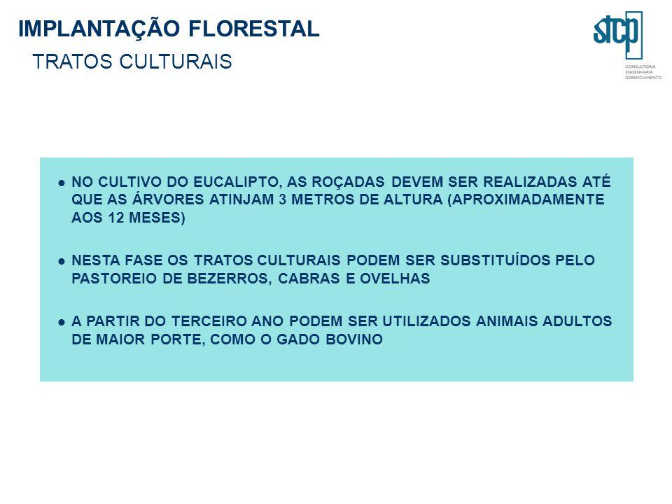 IMPLANTAÇÃO FLORESTAL TRATOS CULTURAIS