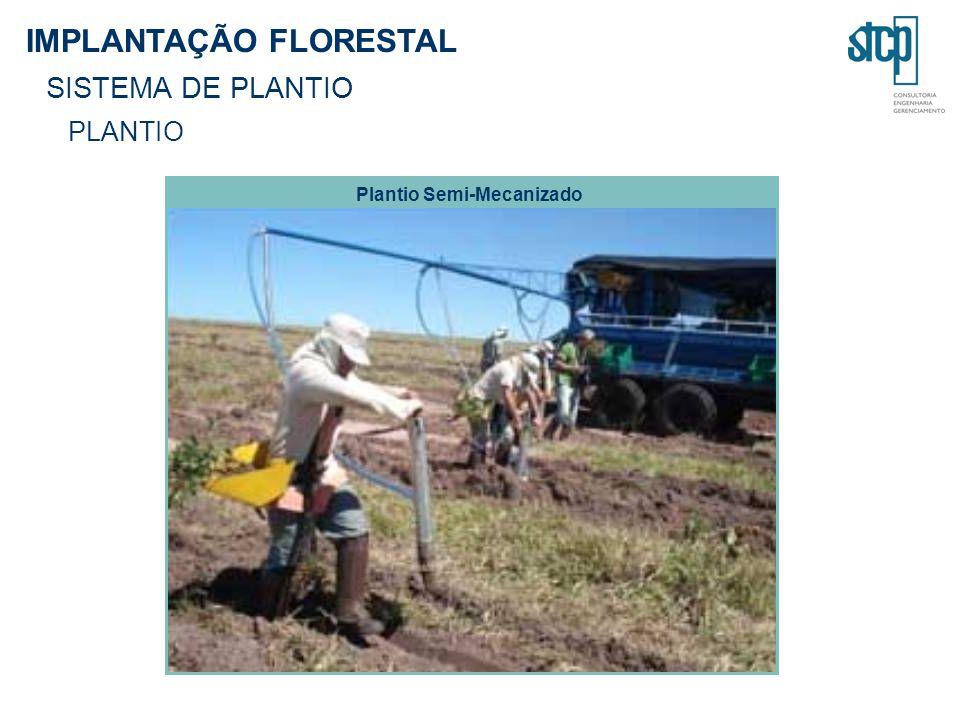 Plantio Semi-Mecanizado