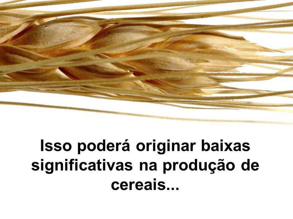 Isso poderá originar baixas significativas na produção de cereais...