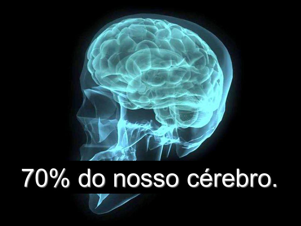 70% do nosso cérebro.