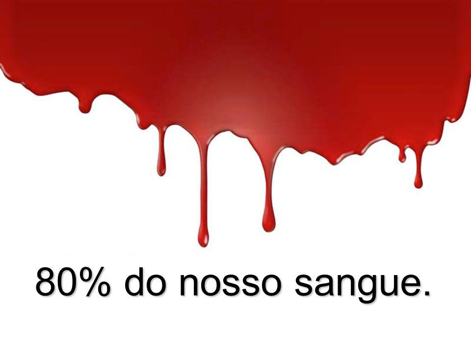 80% do nosso sangue.