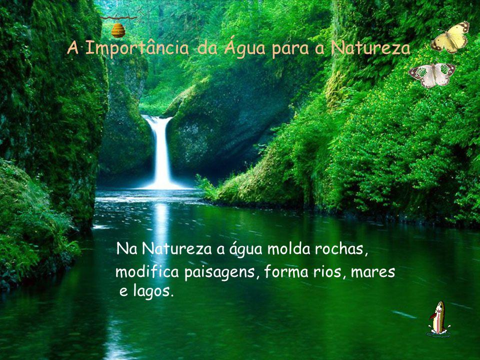 A Importância da Água para a Natureza