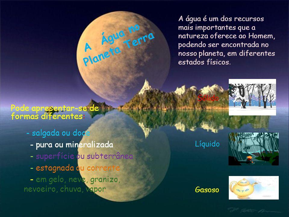 A Água no Planeta Terra Pode apresentar-se de formas diferentes: