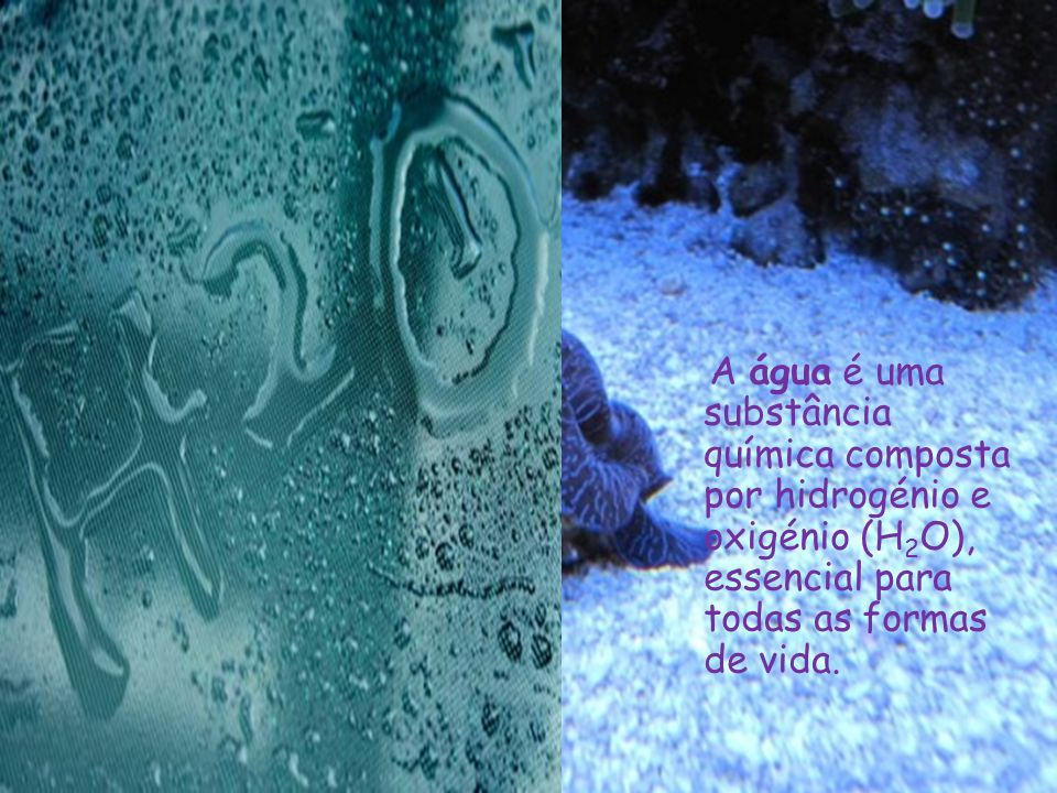A água é uma substância química composta por hidrogénio e oxigénio (H2O), essencial para todas as formas de vida.