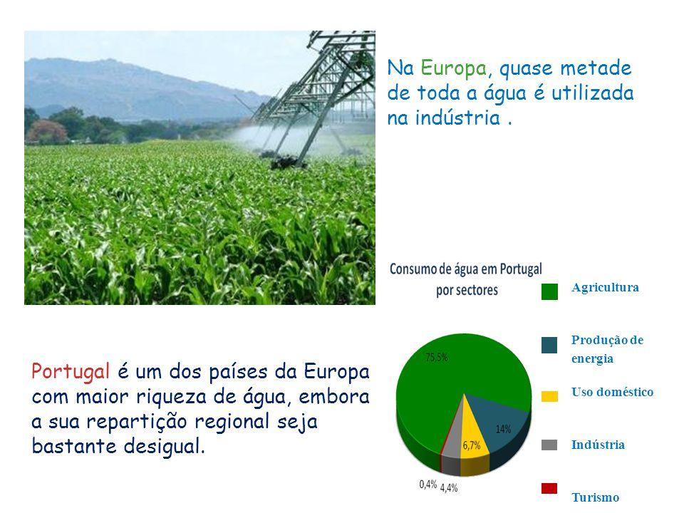 Na Europa, quase metade de toda a água é utilizada na indústria .