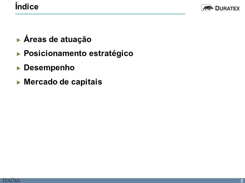 Índice Áreas de atuação Posicionamento estratégico Desempenho Mercado de capitais