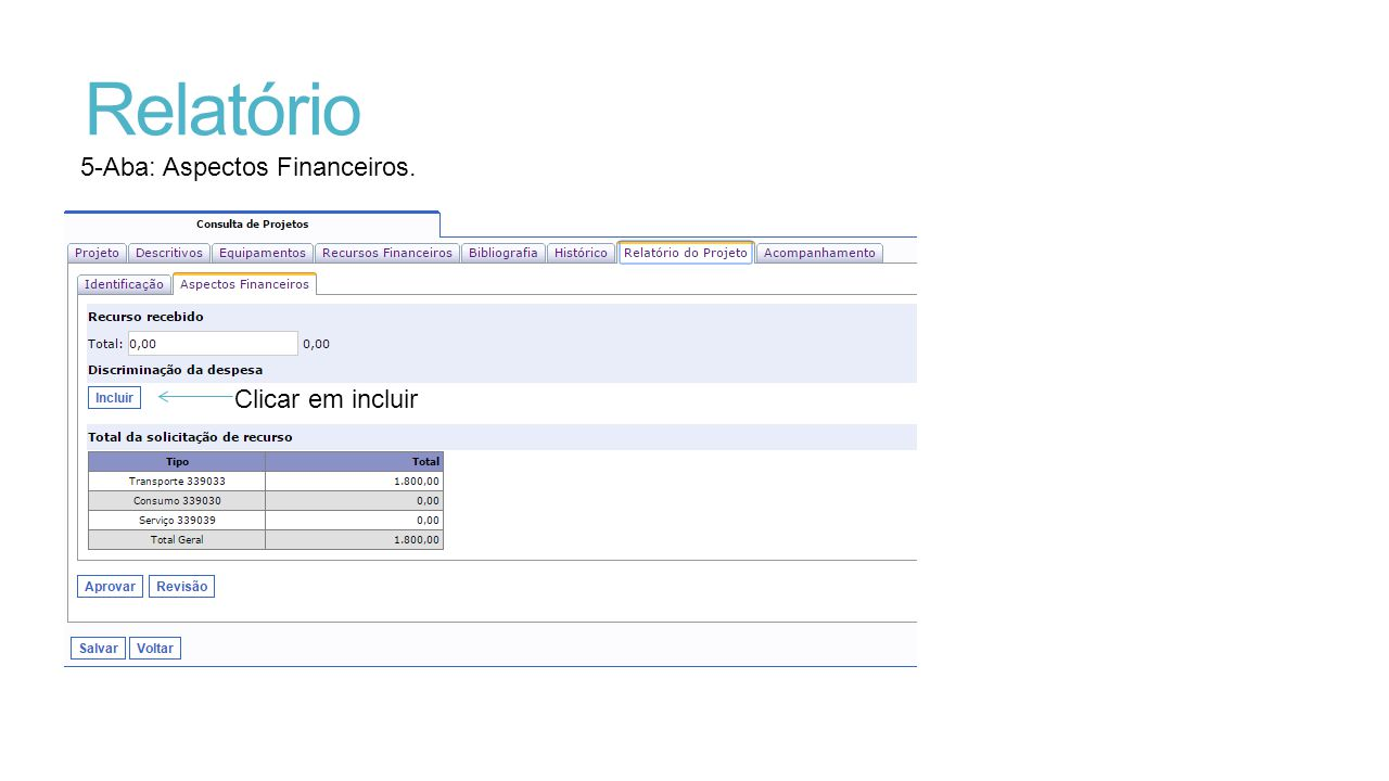 Relatório 5-Aba: Aspectos Financeiros. Clicar em incluir