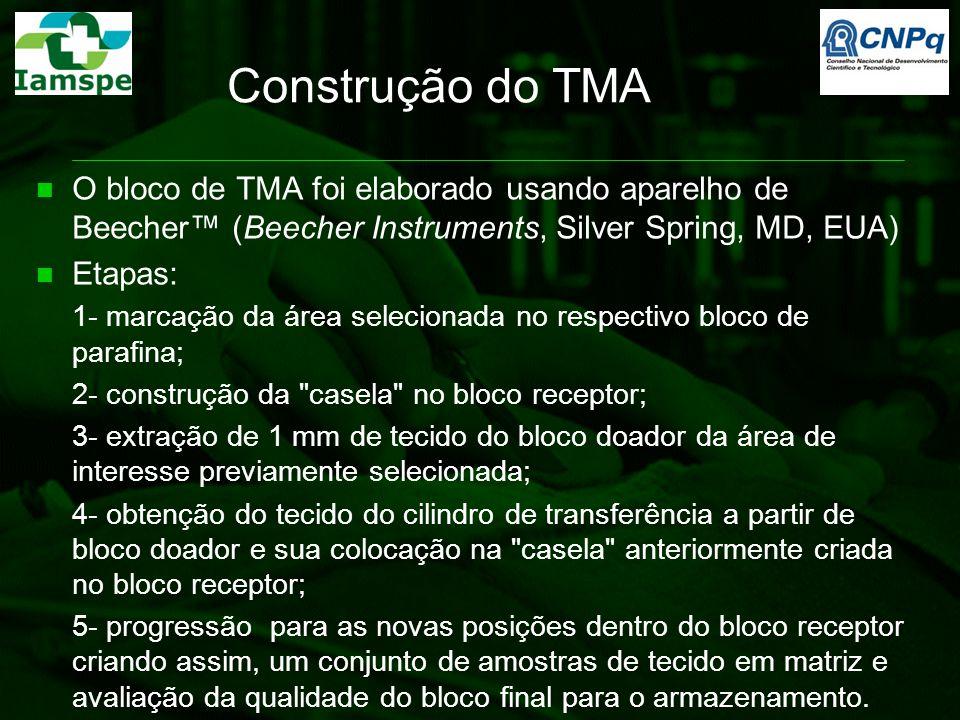 Construção do TMA O bloco de TMA foi elaborado usando aparelho de Beecher™ (Beecher Instruments, Silver Spring, MD, EUA)
