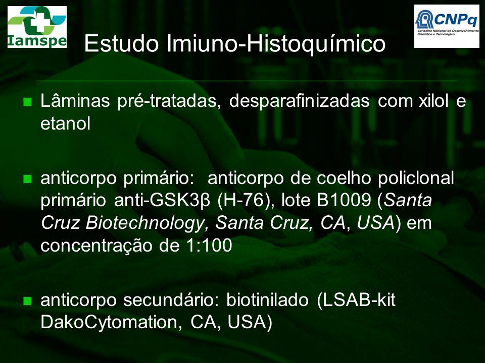 Estudo Imiuno-Histoquímico