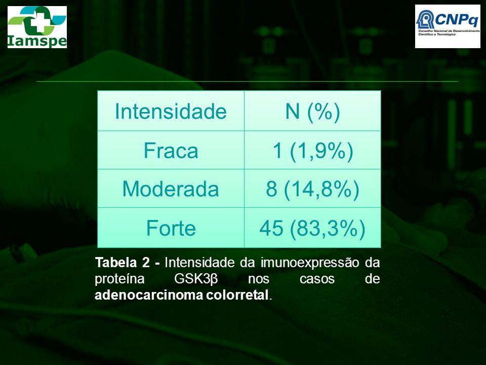 Intensidade N (%) Fraca 1 (1,9%) Moderada 8 (14,8%) Forte 45 (83,3%)