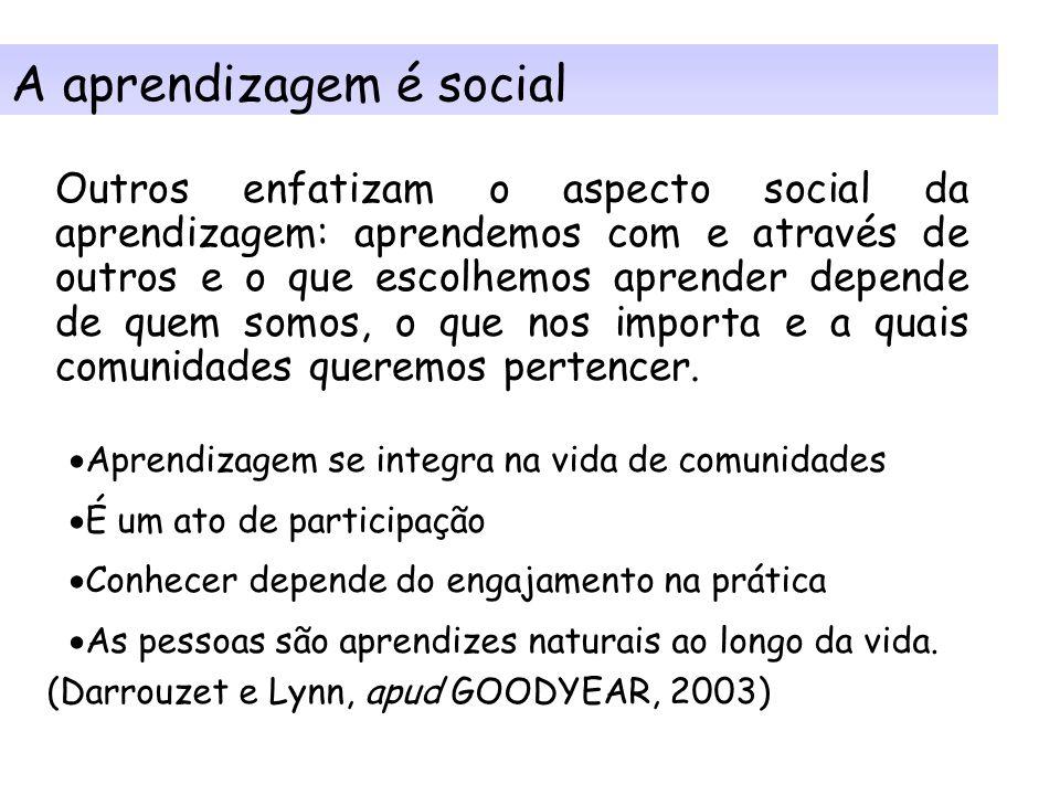 A aprendizagem é social