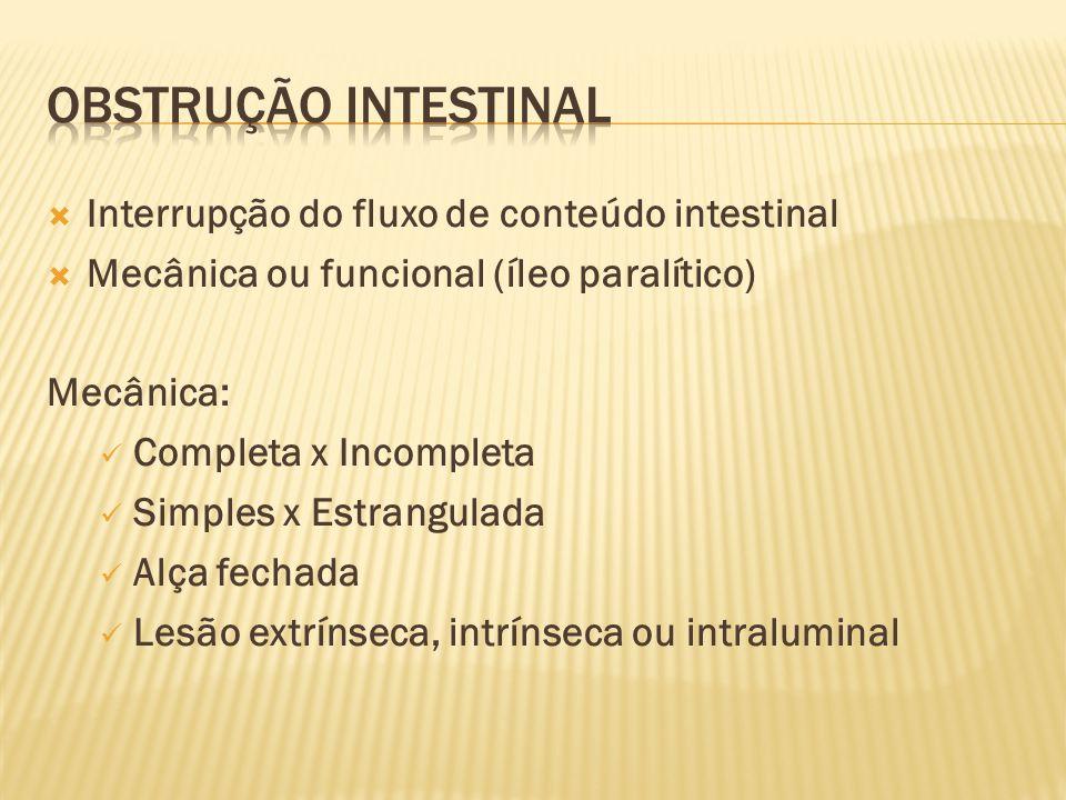 Obstrução intestinal Interrupção do fluxo de conteúdo intestinal