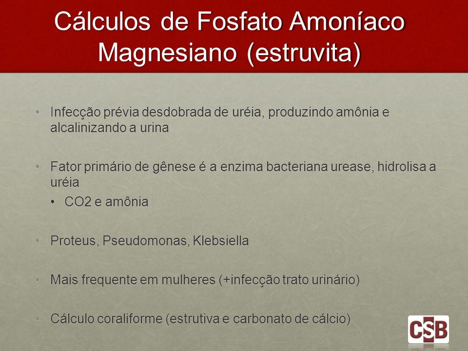 Cálculos de Fosfato Amoníaco Magnesiano (estruvita)