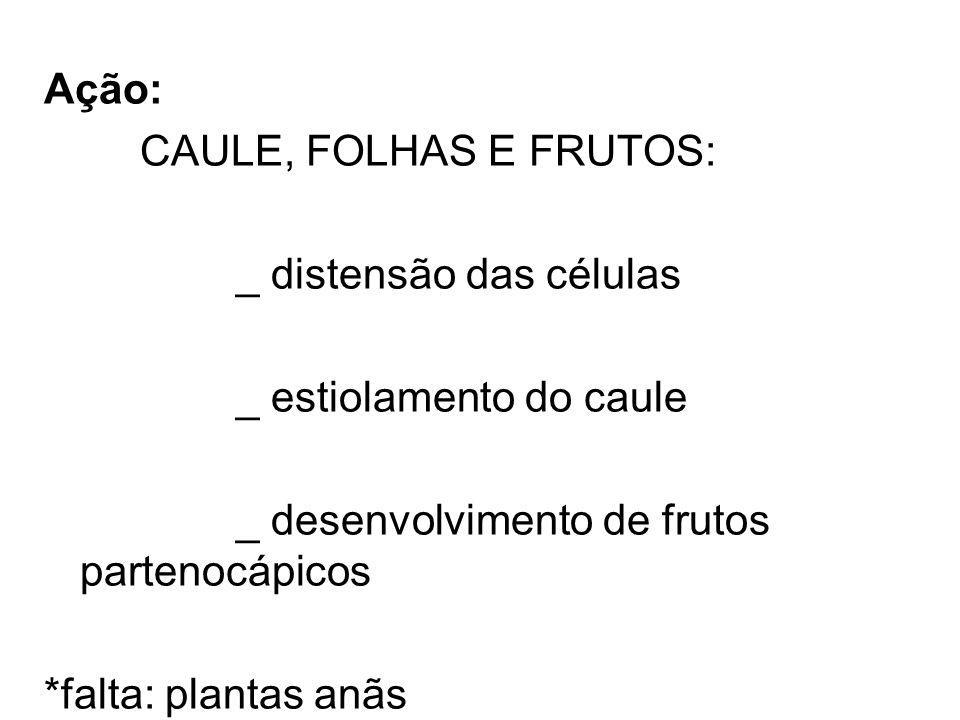 Ação: CAULE, FOLHAS E FRUTOS: _ distensão das células. _ estiolamento do caule. _ desenvolvimento de frutos partenocápicos.