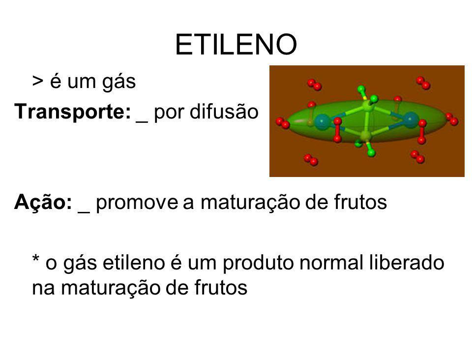 ETILENO > é um gás Transporte: _ por difusão