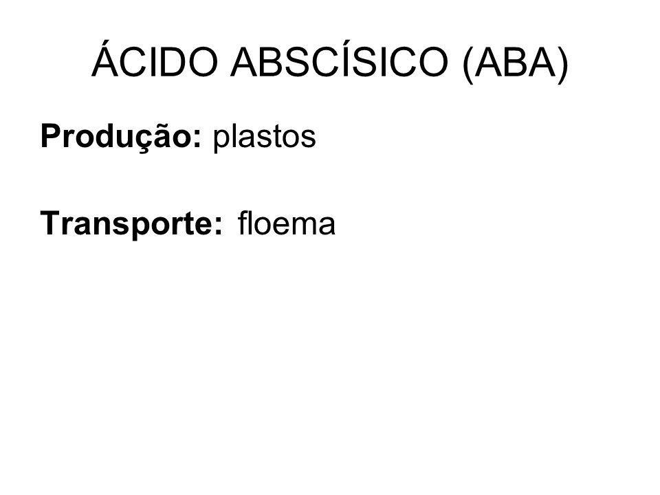 ÁCIDO ABSCÍSICO (ABA) Produção: plastos Transporte: floema