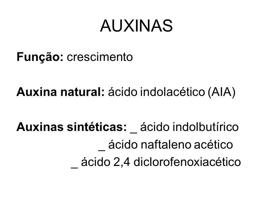 AUXINAS Função: crescimento Auxina natural: ácido indolacético (AIA)