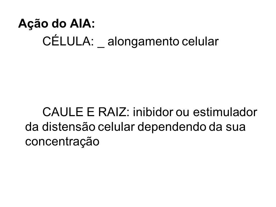 Ação do AIA: CÉLULA: _ alongamento celular.
