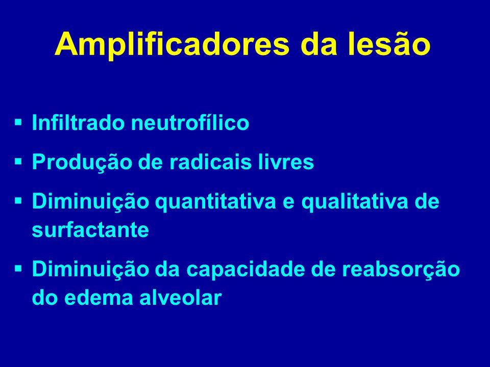 Amplificadores da lesão