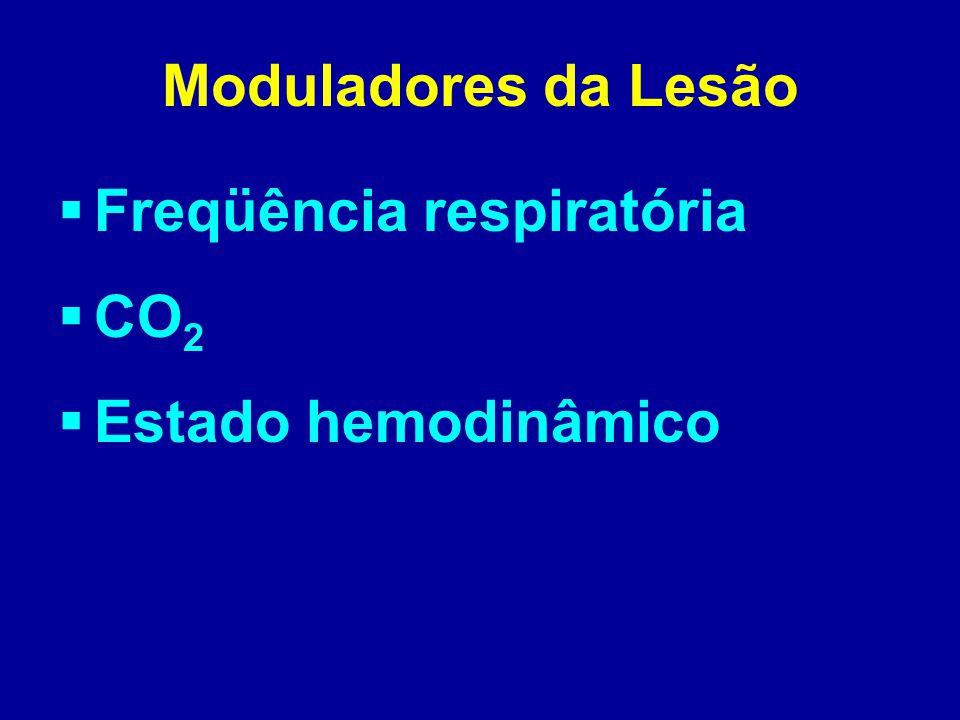 Moduladores da Lesão Freqüência respiratória CO2 Estado hemodinâmico