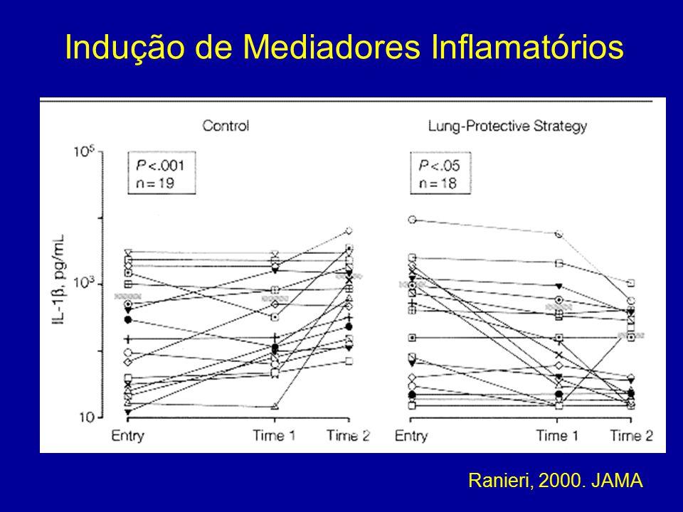 Indução de Mediadores Inflamatórios
