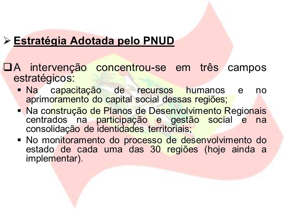 Estratégia Adotada pelo PNUD