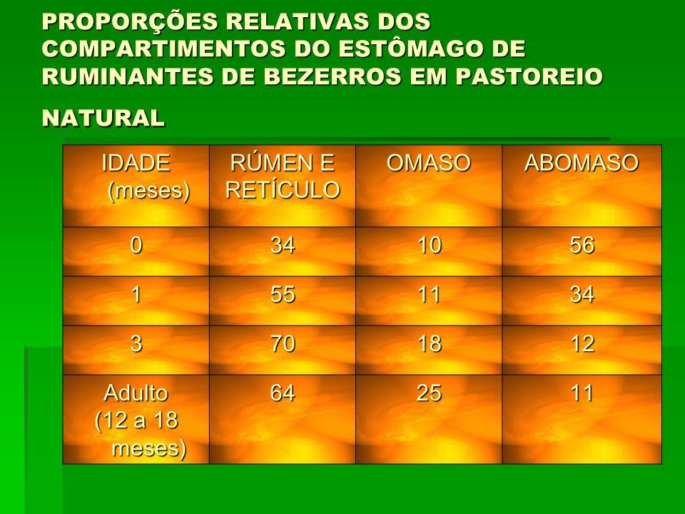 PROPORÇÕES RELATIVAS DOS COMPARTIMENTOS DO ESTÔMAGO DE RUMINANTES DE BEZERROS EM PASTOREIO NATURAL