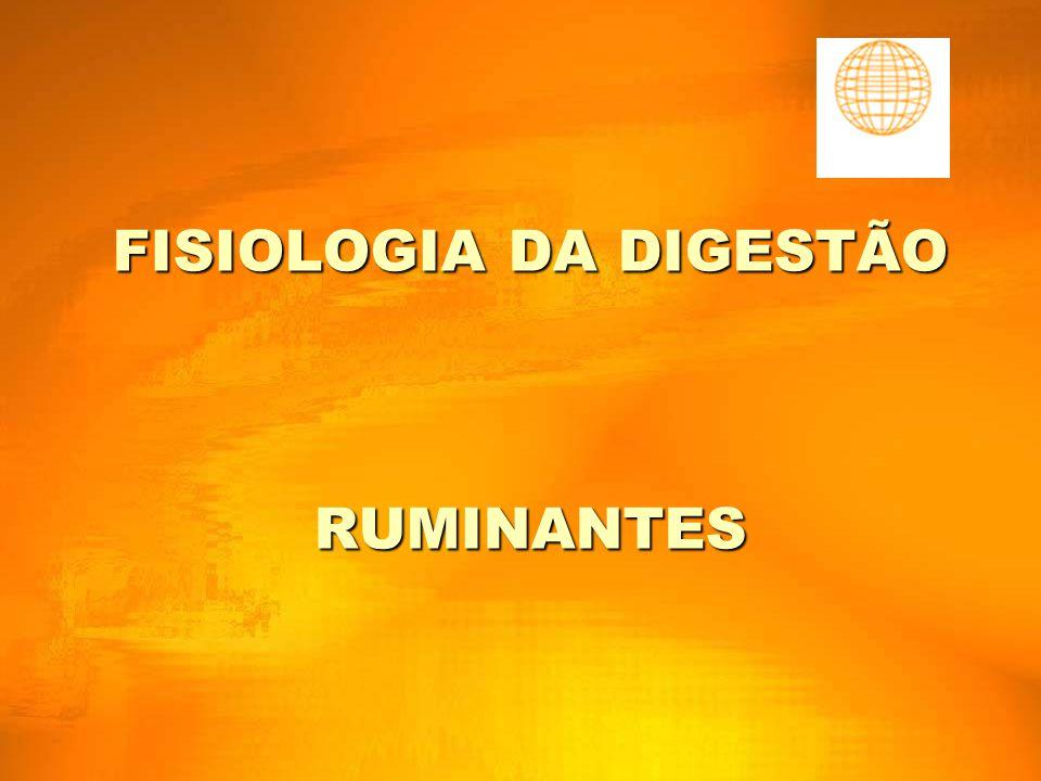 FISIOLOGIA DA DIGESTÃO RUMINANTES