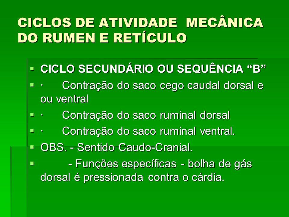 CICLOS DE ATIVIDADE MECÂNICA DO RUMEN E RETÍCULO