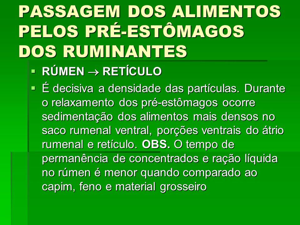 PASSAGEM DOS ALIMENTOS PELOS PRÉ-ESTÔMAGOS DOS RUMINANTES