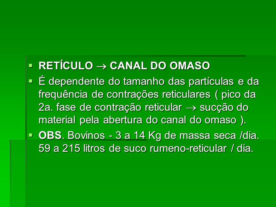 RETÍCULO  CANAL DO OMASO