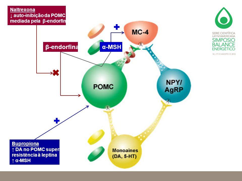 β-endorfina α-MSH Naltrexona ↓ auto-inibição da POMC