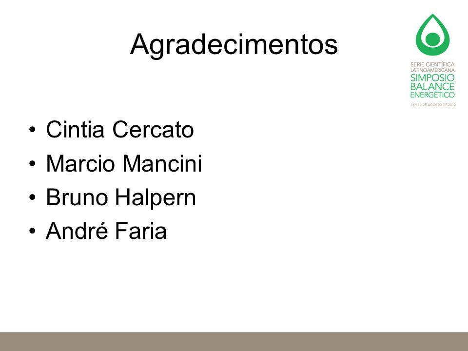 Agradecimentos Cintia Cercato Marcio Mancini Bruno Halpern André Faria