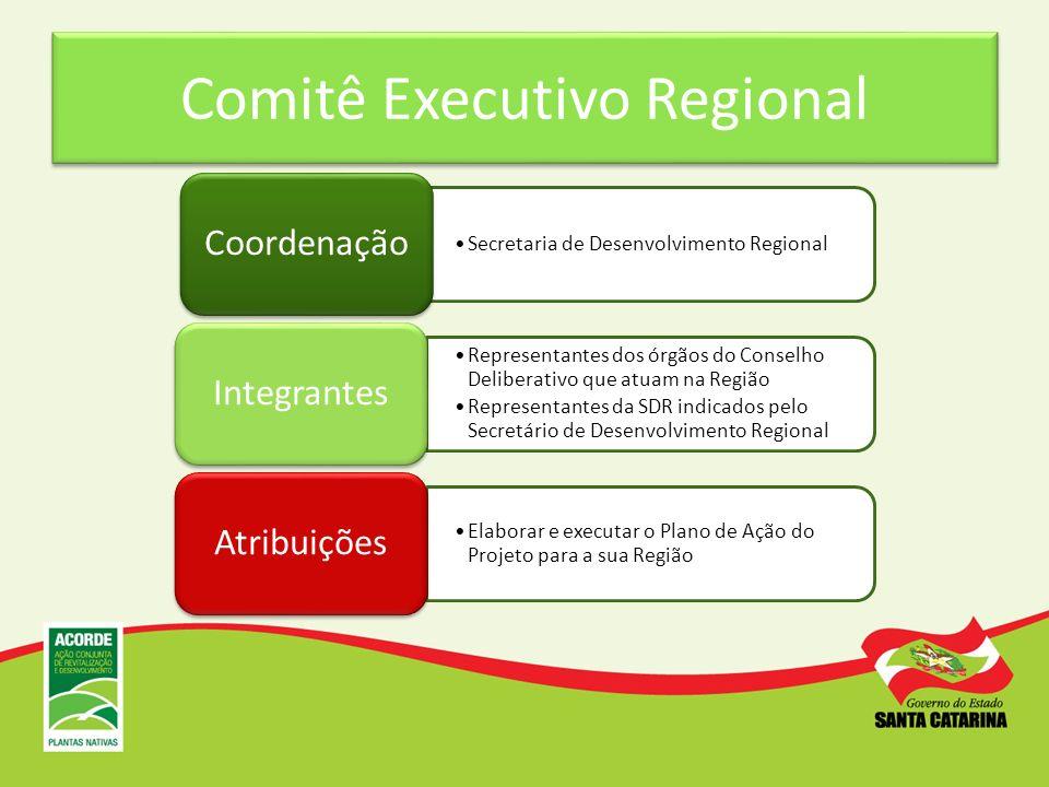 Comitê Executivo Regional