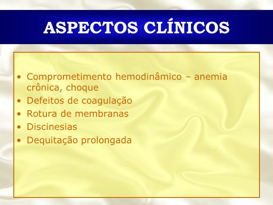 ASPECTOS CLÍNICOS Comprometimento hemodinâmico – anemia crônica, choque. Defeitos de coagulação. Rotura de membranas.