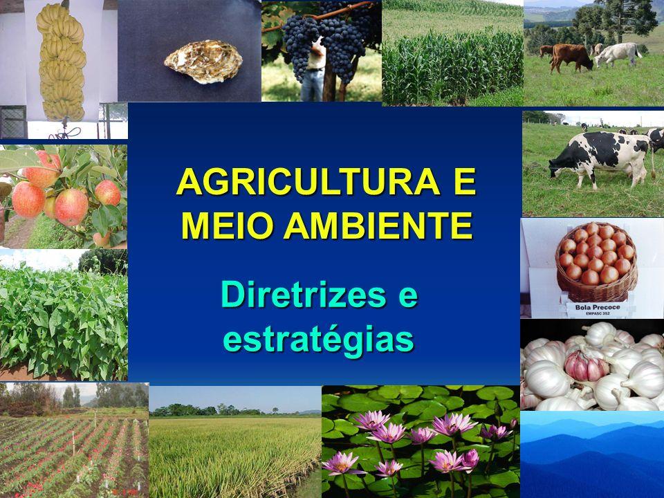 AGRICULTURA E MEIO AMBIENTE Diretrizes e estratégias