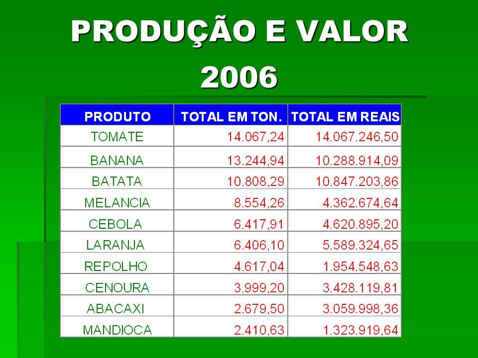 PRODUÇÃO E VALOR 2006